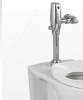 Flushometer Elongated Toilets