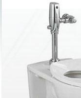 Flushometer Elongated Toilets