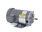Pool & Spa Motors